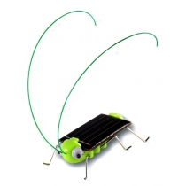 Entzückende Sonnenenergie-Roboter-Insekt-Wanzen Heuschrecke-Heuschrecken-Spielzeugkind