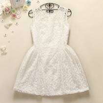 Simple Solid Color Semi-sheer Daisy Embroidered White Dress with a vest