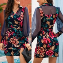 Sexy Kleid mit Langen Ärmeln aus Mesh Schlitz Schickem Muster und Schlanker Passform