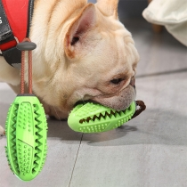 Hundezahnbürste Kauspielzeug